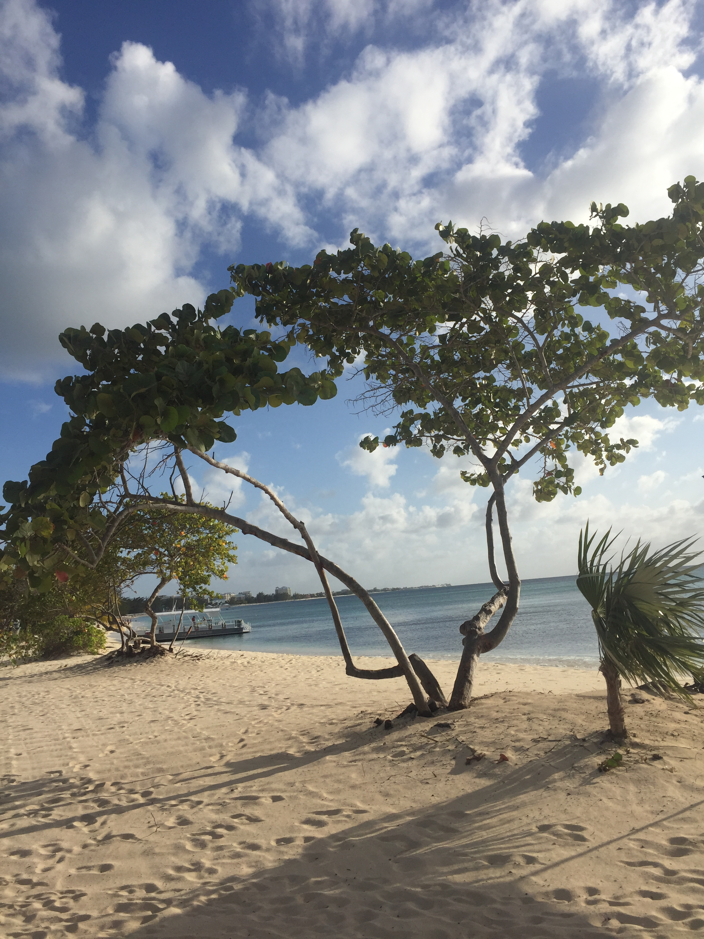Daydreams of Grand Cayman